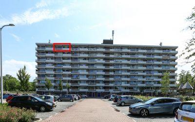 Peppelhorst 63