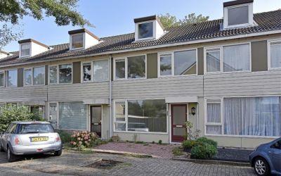 Couwenhoven 4106