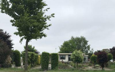 Hoofdstraat 99