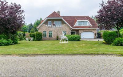 Oosterwijk WZ 71