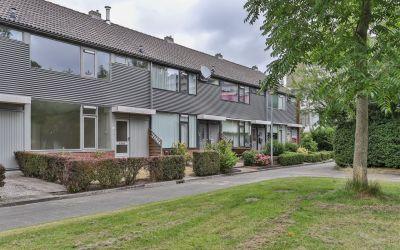Robijnstraat 41