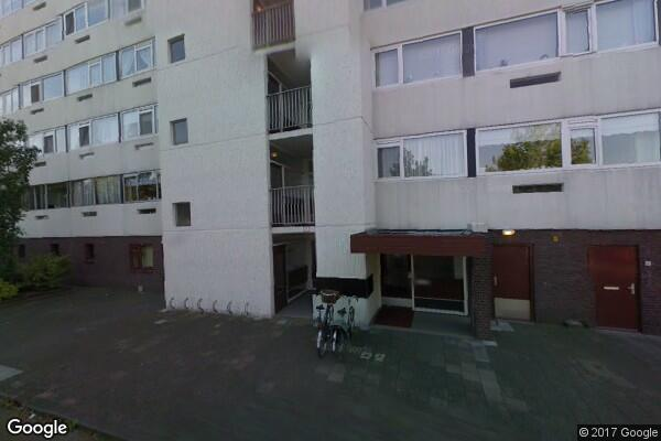 Pruylenborg 136