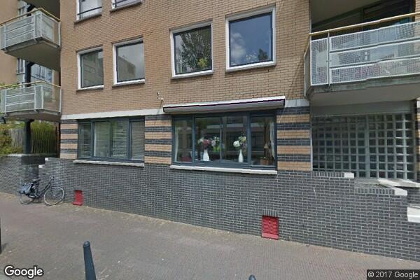 Arthur van Schendelstraat 249