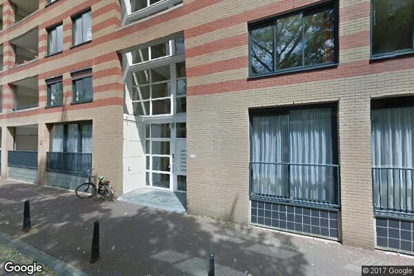 Arthur van Schendelstraat 517