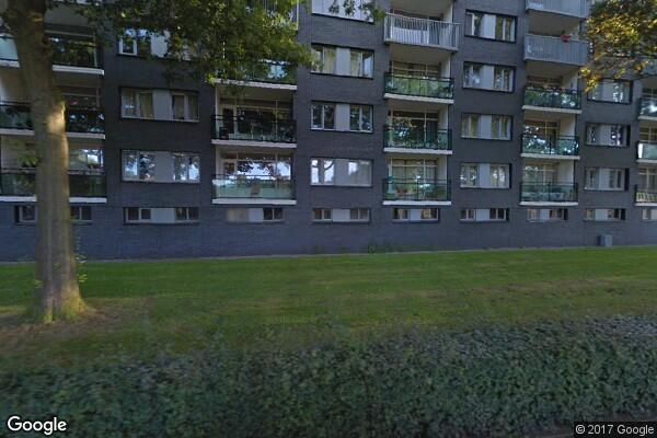 Griegstraat 523